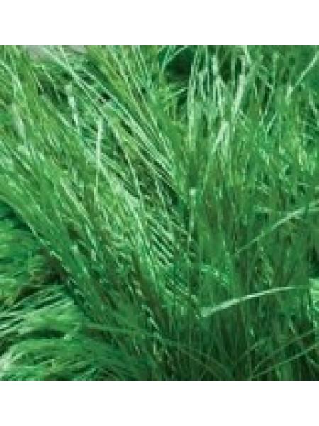 Травка Декофур зеленый  595